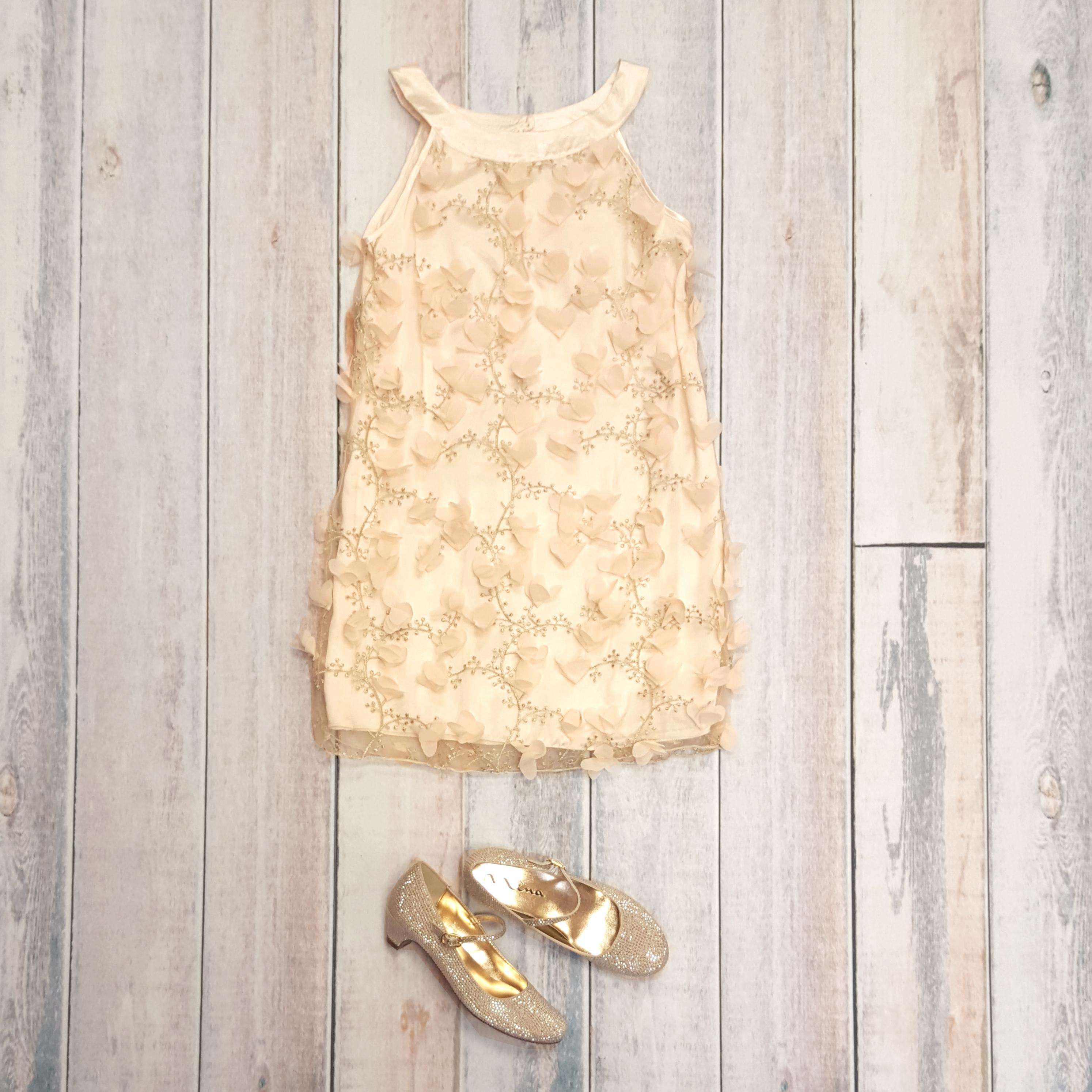 biscotti dress spring 16